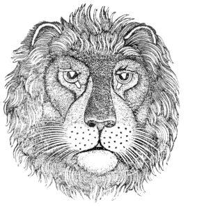 schiller lion